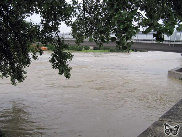 Hochwasser Donau Ingolstadt Juni 2013 - 2