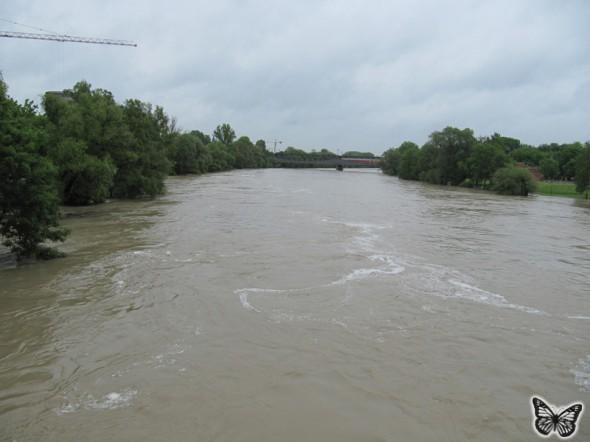 Hochwasser Donau Ingolstadt Juni 2013 - 6