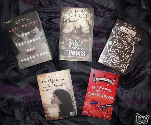 2013-06-24_books