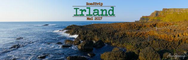2017 Irland