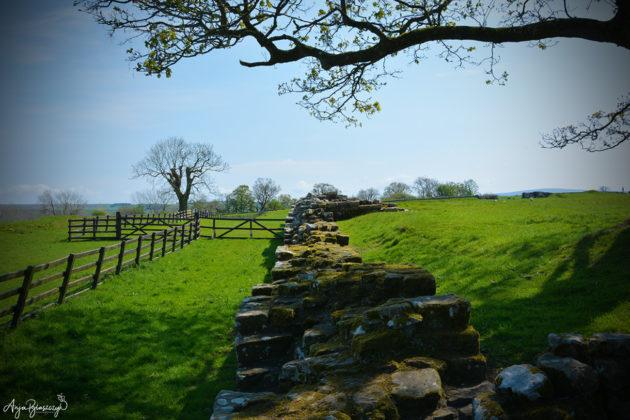 Hadrian's Wall Schottland 2016
